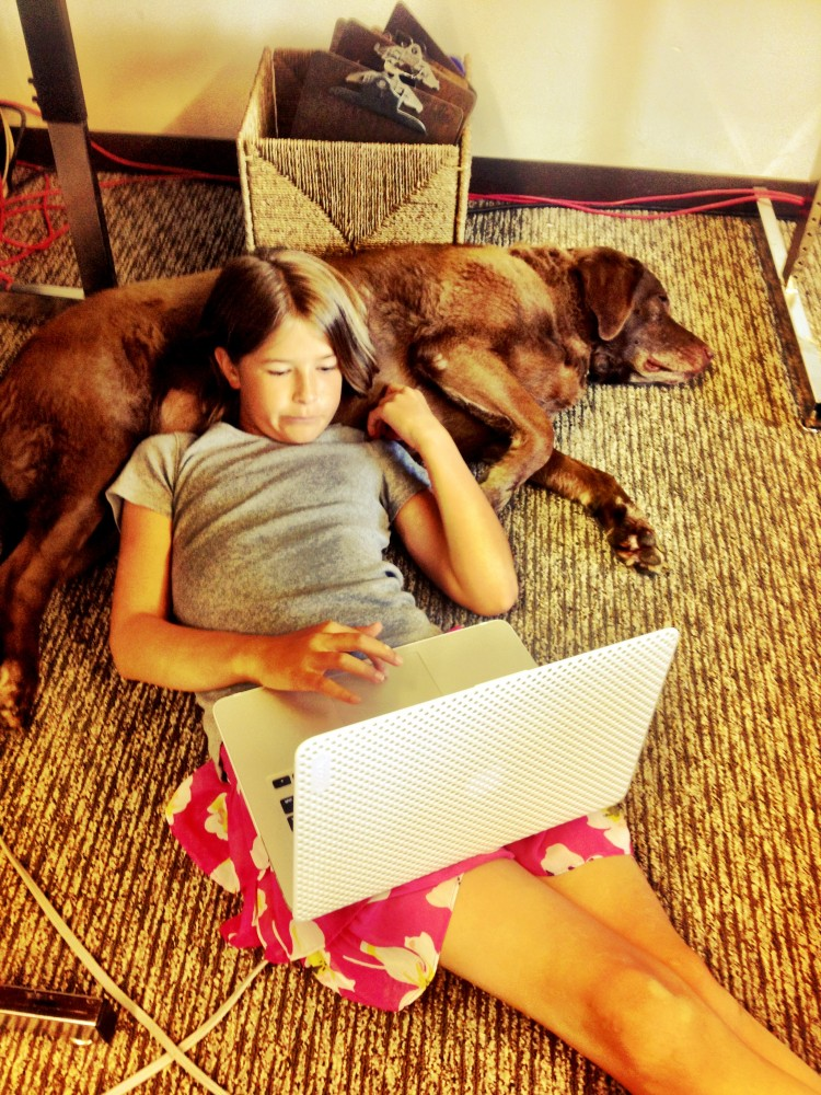 Who Let the Dog....In? 7 Lessons Learned From Bringing My Dog to School. (6/6)